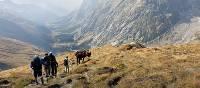 Mont Blanc region, Switzerland | David Smith