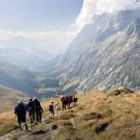 Mont Blanc region, Switzerland   David Smith