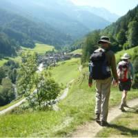 Rambling above a Swiss mountain village   Jac Lofts