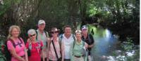 On the Camino Primitivo near Oviedo |  <i>Andreas Holland</i>