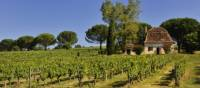 Beautiful Dordogne | Maurice Subervie