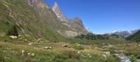 Beautiful alpine scenes in the Mont Blanc region   Michele Eckersley