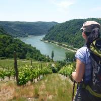 View from the trail on the Rhine