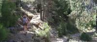 Walking in the Agia Irini gorge, Crete
