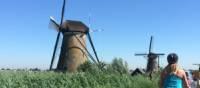 Cycling near the Kinderdijk windmills   Vicki Wasilewska Fletcher