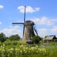 Windmills of Kinderdijk   NBTC