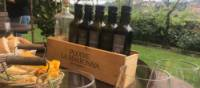 Sampling olive oils and wines in the picturesque vineyards of Italy | Allie Peden