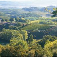 The rolling hills of Tuscany, Italy | Chris Viney