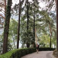 Walking alongside Lake Como | Jaclyn Lofts