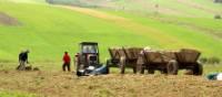 Local farmers tend to their crops in Poland