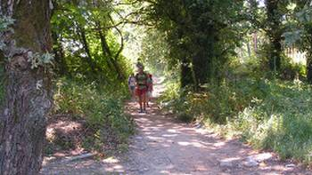 Pilgrims on the Portuguese Camino