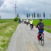 Cycling in Slovakia towards Bratislava | Pat Rochon