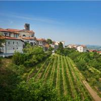 The wine making town of Brda | Tomo Jesenicnik