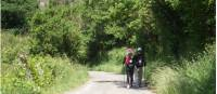 Pilgrims on the Camino |  <i>Dana Garofani</i>