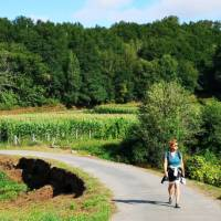 Idyllic walking along the Camino Sanabres in Spain