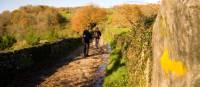 Walking along the Camino