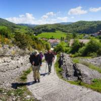 Pilgrims crossing the Pyrenees near Roncesvalles | Gesine Cheung