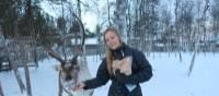 Feeding Reindeers near Kiruna, Lapland | Kate Baker