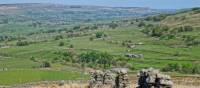 Yorkshire fields | John Millen