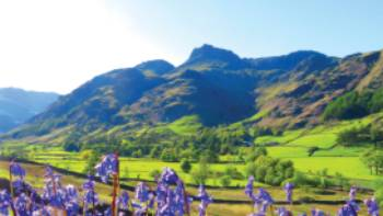 Bluebells and the pikes, Great Langdale | John Millen