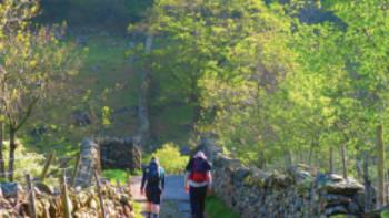 Walking out of Stonethwaite | John Millen