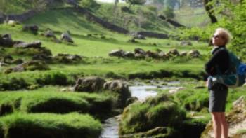 Limestone  tream at Malham | John Millen