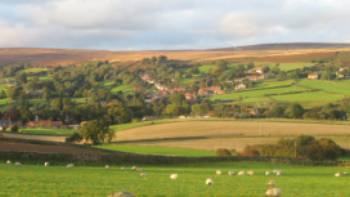 Overlooking High Moor, Danby | John Millen