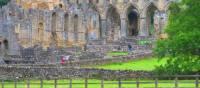 Rievaulx Abbey, near Helmsley | John Millen