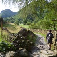 Walking past traditional dry stone walls   Jac Lofts