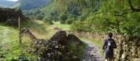 Walking past traditional dry stone walls | Jac Lofts
