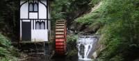 Groudie Glen Watermill | John Millen