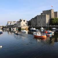 Castle town Harbour | John Millen
