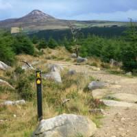 Trail  and waymarking on Wicklow way   John Millen
