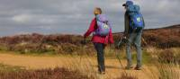 Walkers near Kildale | John Millen