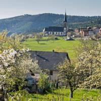 The charming countryside of France's Alsace   Charles Hawes