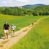 Walking Tarn France