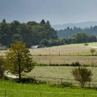 Walking through fields in Bavaria | Will Copestake
