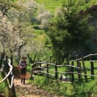Approaching San Luigi, Italy's Apuane Alps