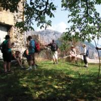 Rest stop under a walnut tree on the way to Pogerelo