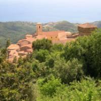 The beautiful village of Pollica   Peter Hoogstaden