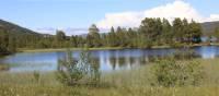 Ustedalsfjorden and cotton grass | John Millen