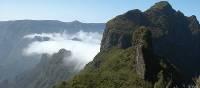 Madeira | David Holmes