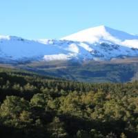 Sierra Nevada | David Ilsley